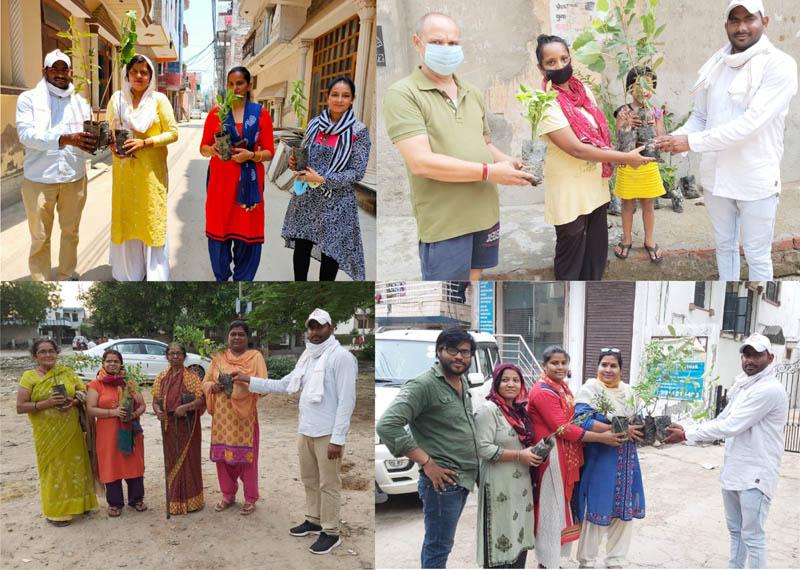 फरीदाबाद : सांसे मुहिम के तहत शहर में बांटे जा रहे हैं फ्री पौधे – जसवंत पवार